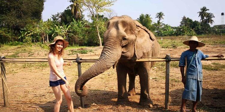 Slon Chiang Mai
